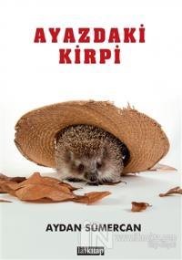 Ayazdaki Kirpi